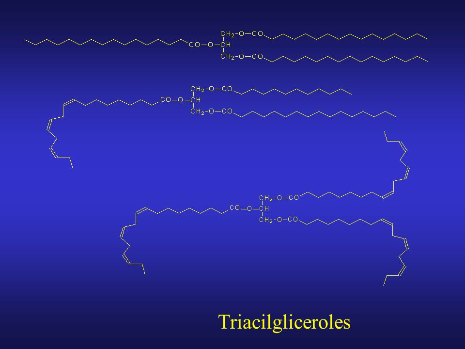 Triacilgliceroles