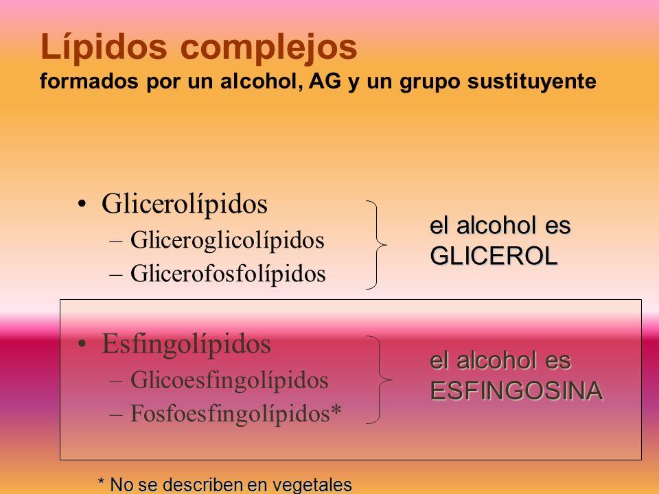 Lípidos complejos formados por un alcohol, AG y un grupo sustituyente