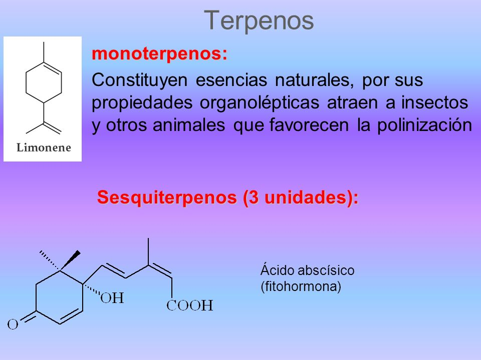 Terpenos monoterpenos: