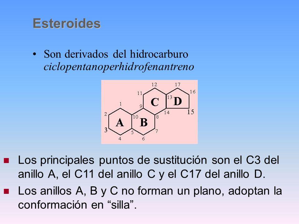 Esteroides Son derivados del hidrocarburo ciclopentanoperhidrofenantreno.