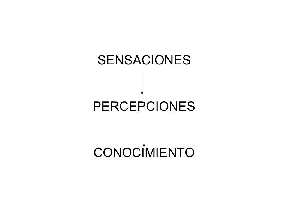 SENSACIONES PERCEPCIONES CONOCIMIENTO