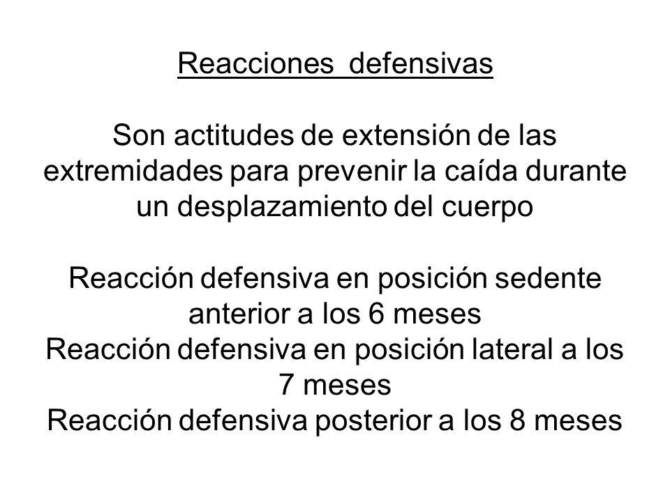 Reacciones defensivas Son actitudes de extensión de las extremidades para prevenir la caída durante un desplazamiento del cuerpo Reacción defensiva en posición sedente anterior a los 6 meses Reacción defensiva en posición lateral a los 7 meses Reacción defensiva posterior a los 8 meses
