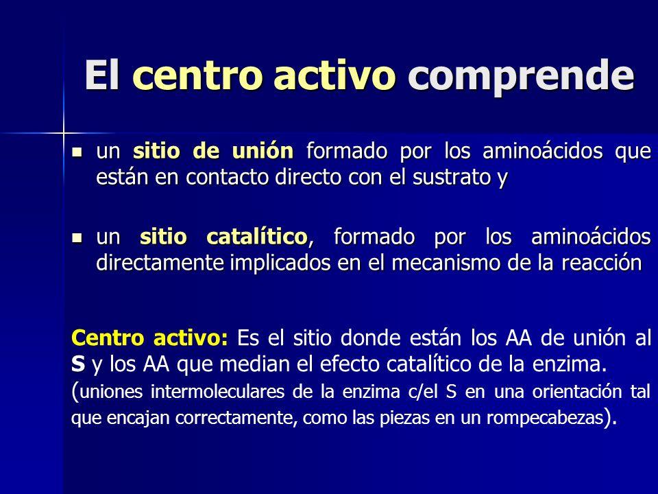 El centro activo comprende