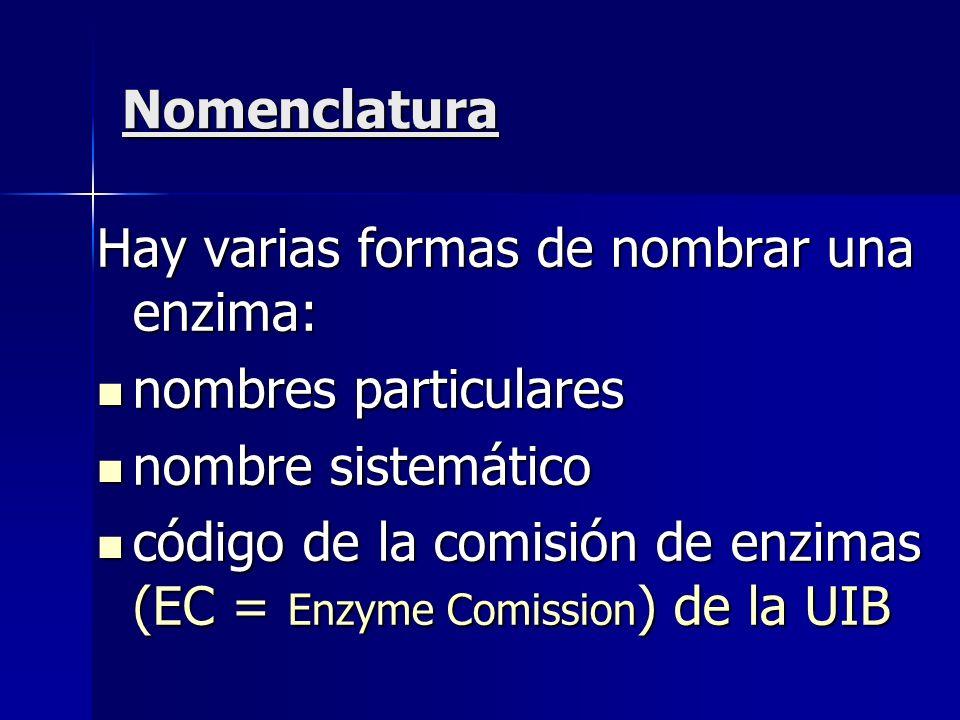 Nomenclatura Hay varias formas de nombrar una enzima: nombres particulares. nombre sistemático.