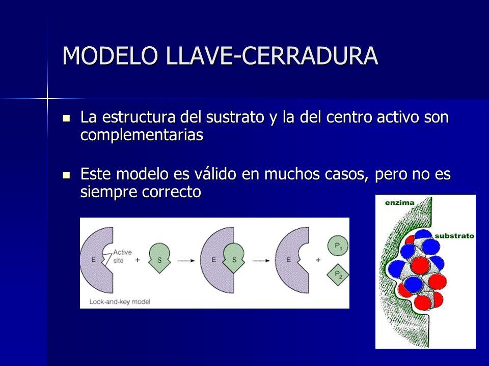 MODELO LLAVE-CERRADURA