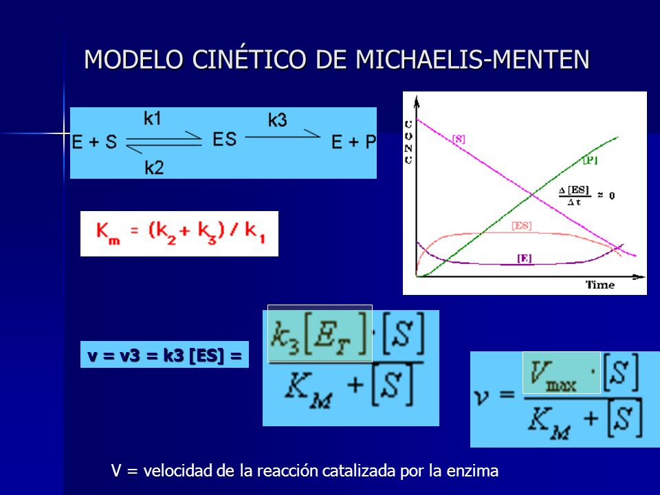 MODELO CINÉTICO DE MICHAELIS-MENTEN