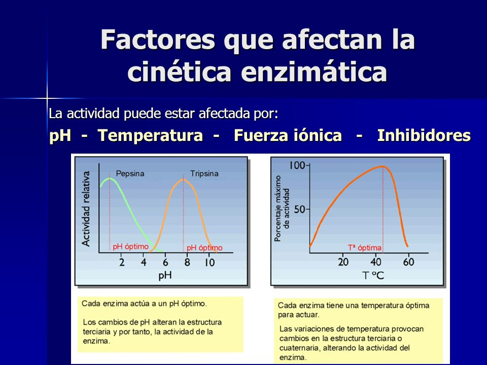 Factores que afectan la cinética enzimática