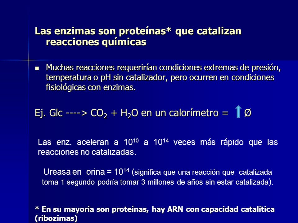 Las enzimas son proteínas* que catalizan reacciones químicas