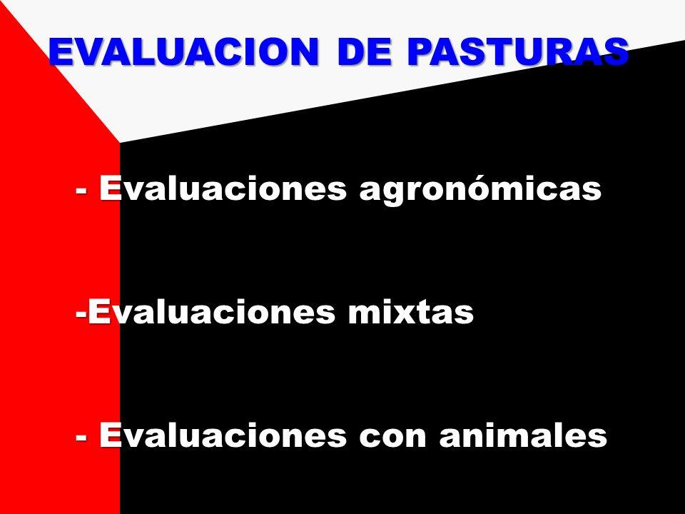 - Evaluaciones agronómicas