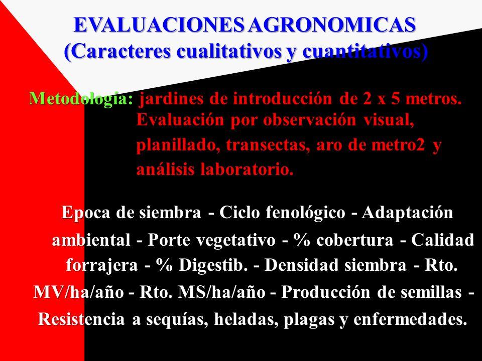 (Caracteres cualitativos y cuantitativos)