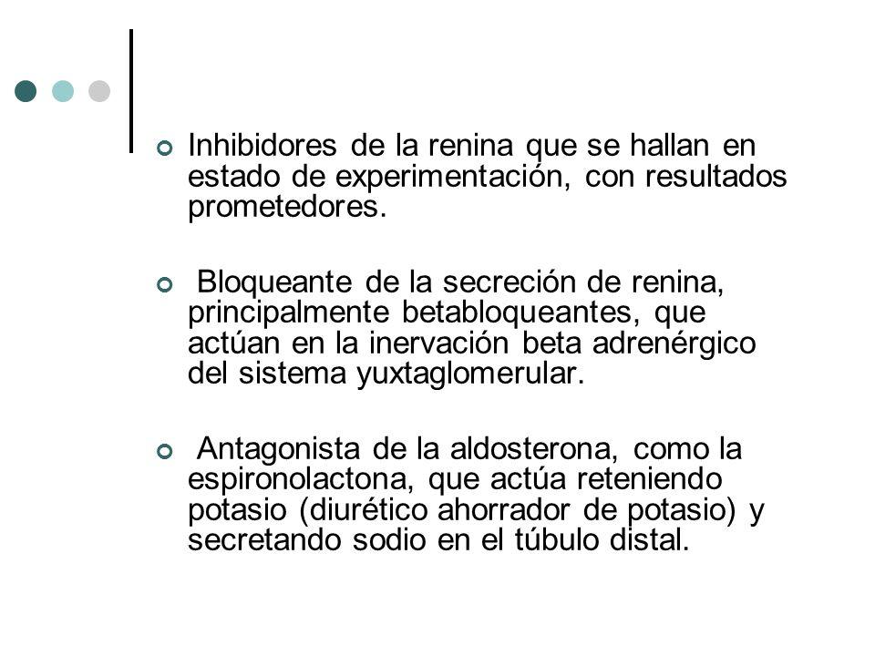 Inhibidores de la renina que se hallan en estado de experimentación, con resultados prometedores.