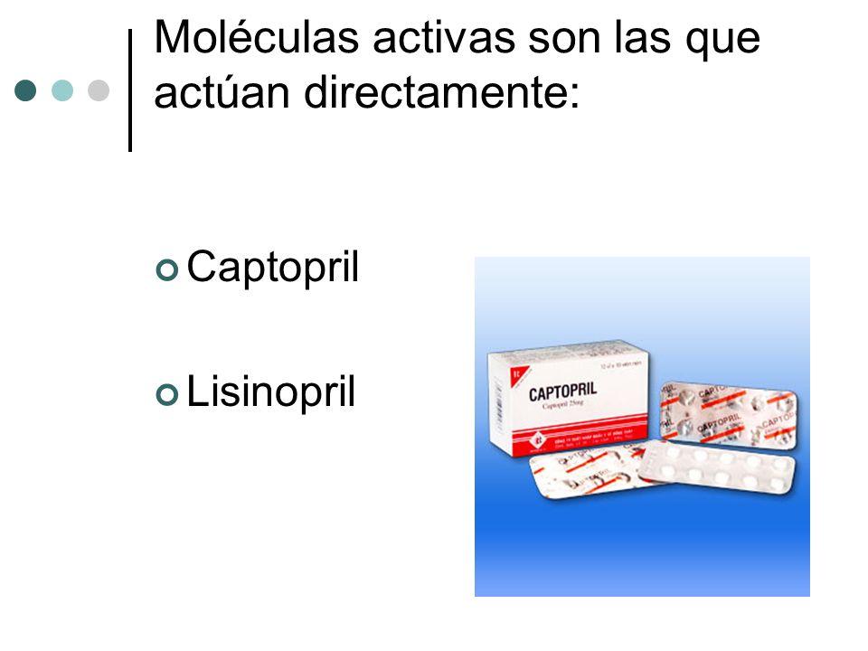 Moléculas activas son las que actúan directamente: