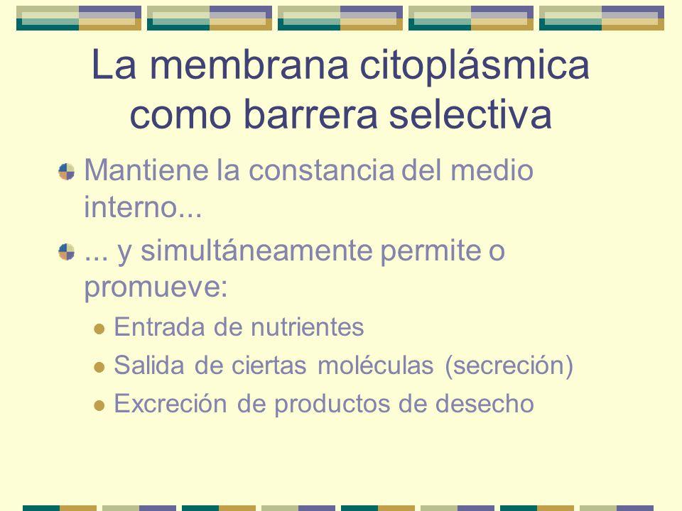 La membrana citoplásmica como barrera selectiva