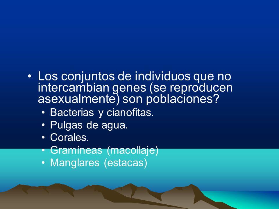 Los conjuntos de individuos que no intercambian genes (se reproducen asexualmente) son poblaciones