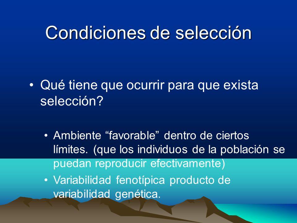 Condiciones de selección