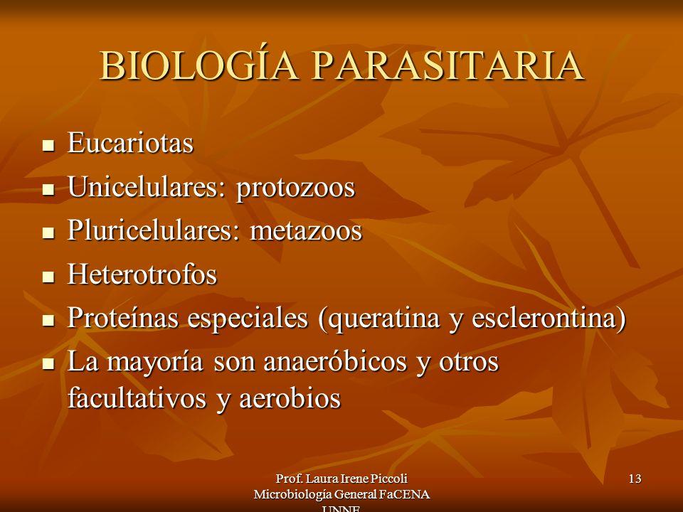 Prof. Laura Irene Piccoli Microbiología General FaCENA UNNE