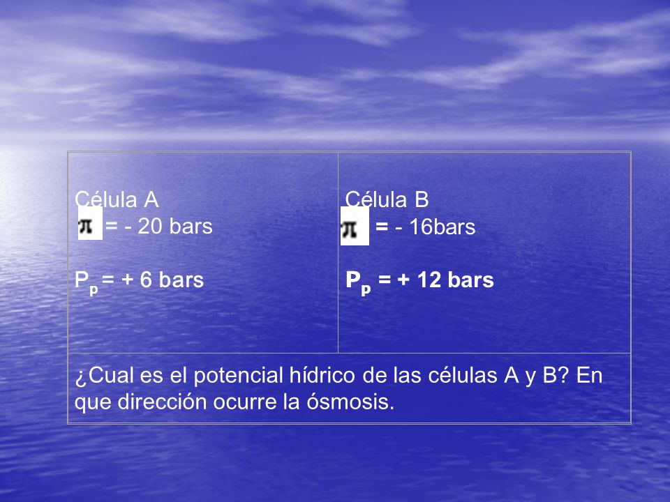 Célula A = - 20 bars. Pp = + 6 bars. Célula B. = - 16bars. Pp = + 12 bars.