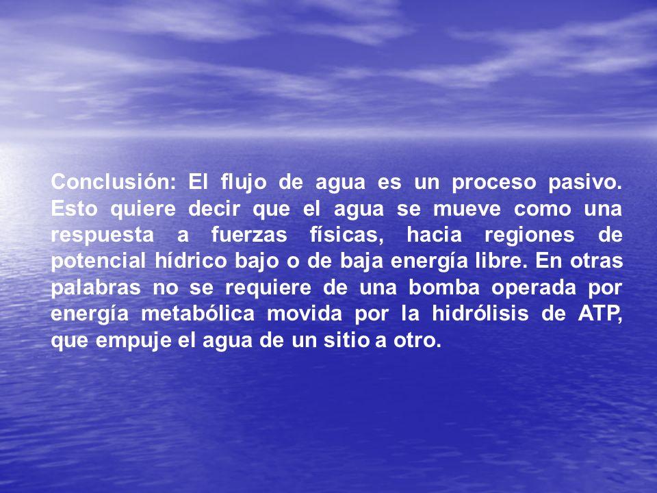 Conclusión: El flujo de agua es un proceso pasivo