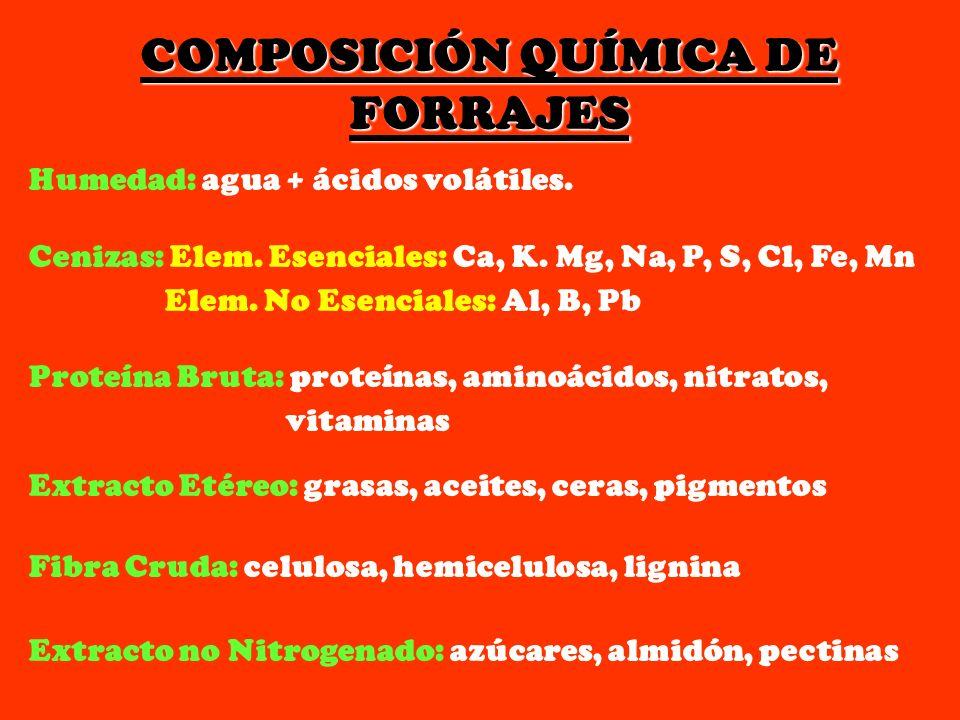 COMPOSICIÓN QUÍMICA DE FORRAJES