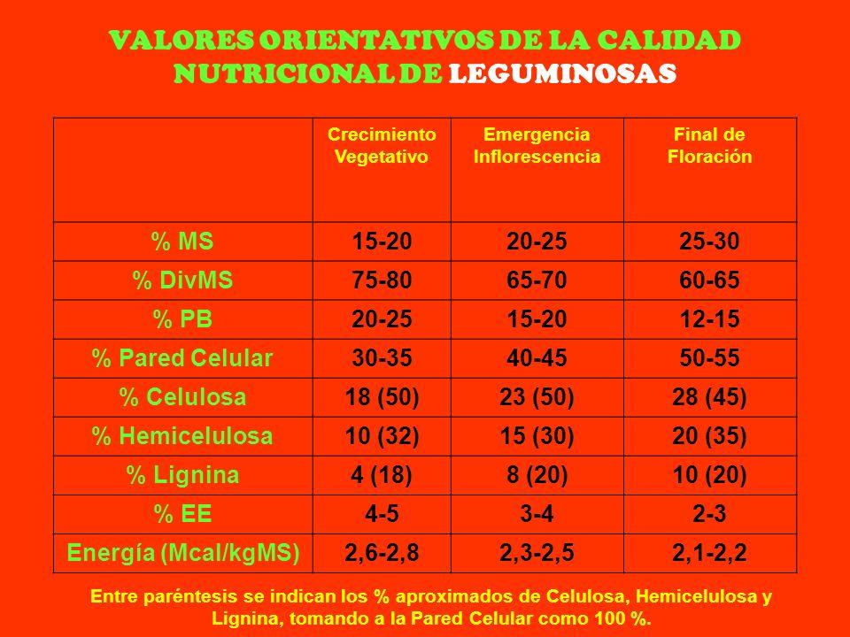 VALORES ORIENTATIVOS DE LA CALIDAD NUTRICIONAL DE LEGUMINOSAS