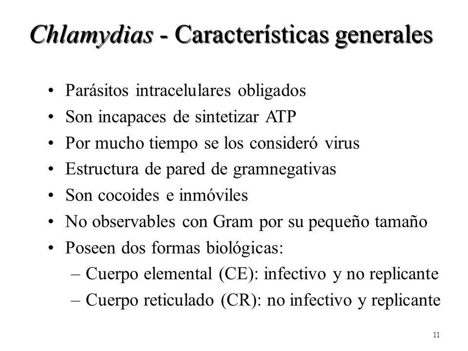 Chlamydias - Características generales