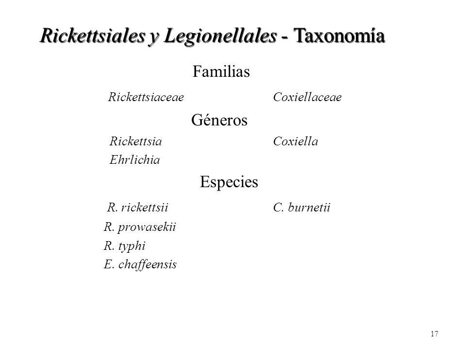 Rickettsiales y Legionellales - Taxonomía
