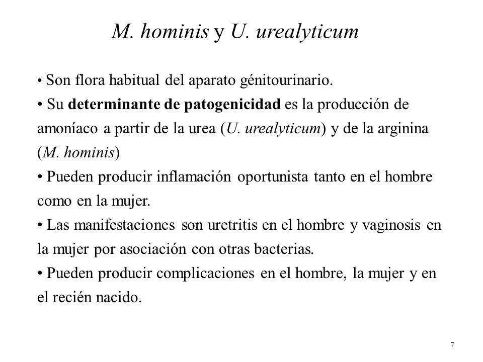 M. hominis y U. urealyticum