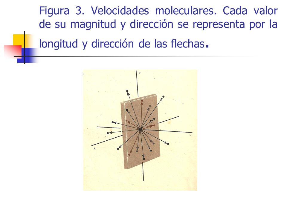 Figura 3. Velocidades moleculares