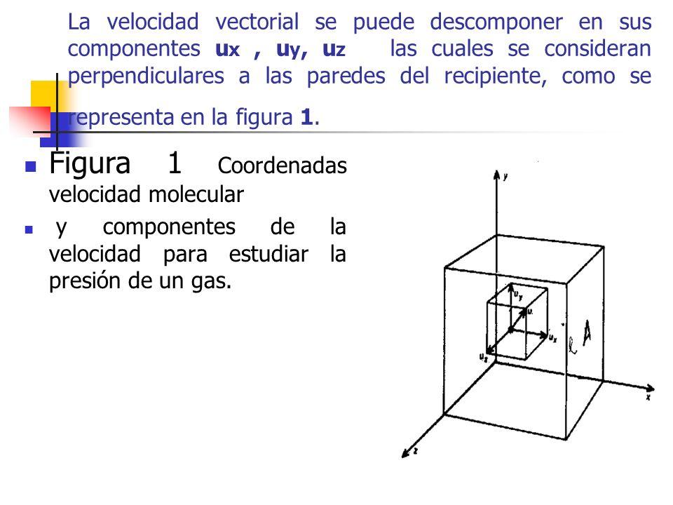 Figura 1 Coordenadas velocidad molecular