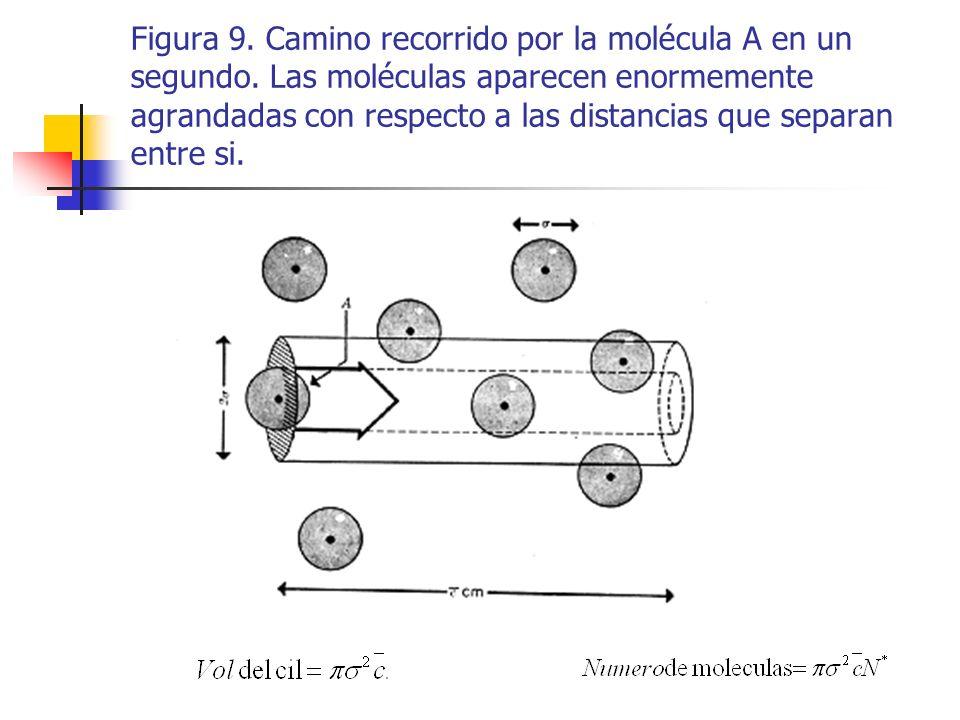 Figura 9. Camino recorrido por la molécula A en un segundo