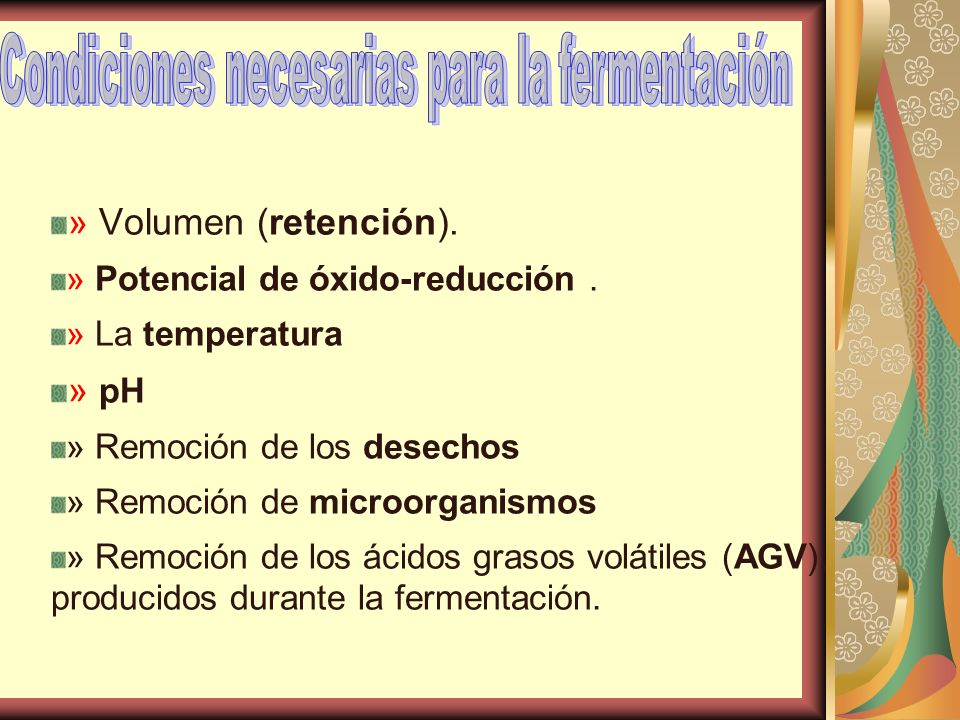 Condiciones necesarias para la fermentación