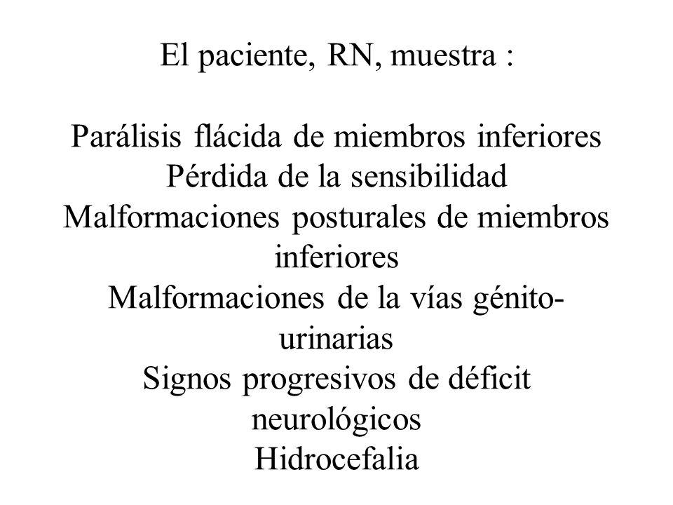 El paciente, RN, muestra : Parálisis flácida de miembros inferiores Pérdida de la sensibilidad Malformaciones posturales de miembros inferiores Malformaciones de la vías génito-urinarias Signos progresivos de déficit neurológicos Hidrocefalia