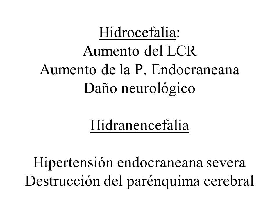 Hidrocefalia: Aumento del LCR Aumento de la P