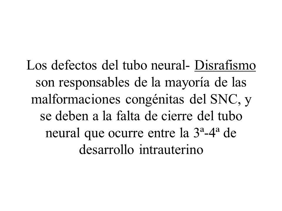 Los defectos del tubo neural- Disrafismo son responsables de la mayoría de las malformaciones congénitas del SNC, y se deben a la falta de cierre del tubo neural que ocurre entre la 3ª-4ª de desarrollo intrauterino