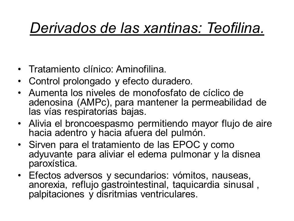 Derivados de las xantinas: Teofilina.