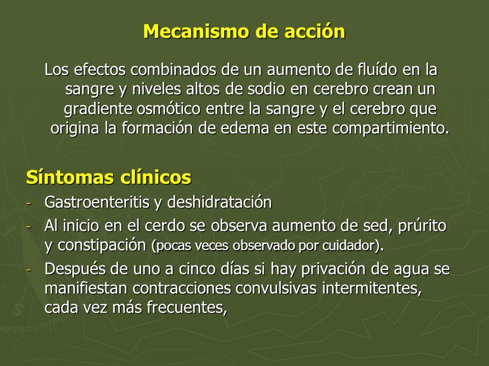 Mecanismo de acción Síntomas clínicos