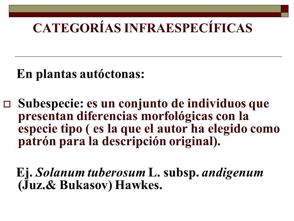 CATEGORÍAS INFRAESPECÍFICAS