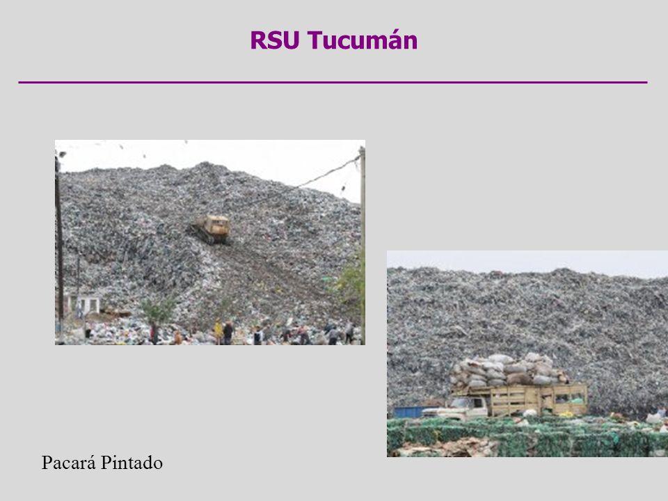 RSU Tucumán Pacará Pintado