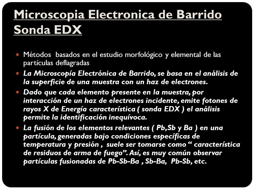 Microscopia Electronica de Barrido Sonda EDX