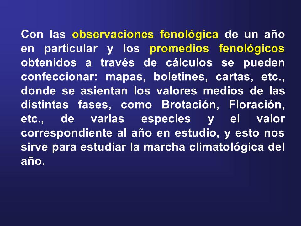 Con las observaciones fenológica de un año en particular y los promedios fenológicos obtenidos a través de cálculos se pueden confeccionar: mapas, boletines, cartas, etc., donde se asientan los valores medios de las distintas fases, como Brotación, Floración, etc., de varias especies y el valor correspondiente al año en estudio, y esto nos sirve para estudiar la marcha climatológica del año.