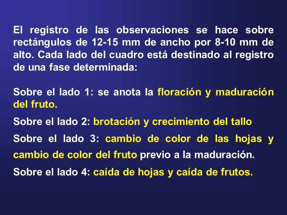 El registro de las observaciones se hace sobre rectángulos de 12-15 mm de ancho por 8-10 mm de alto. Cada lado del cuadro está destinado al registro de una fase determinada: