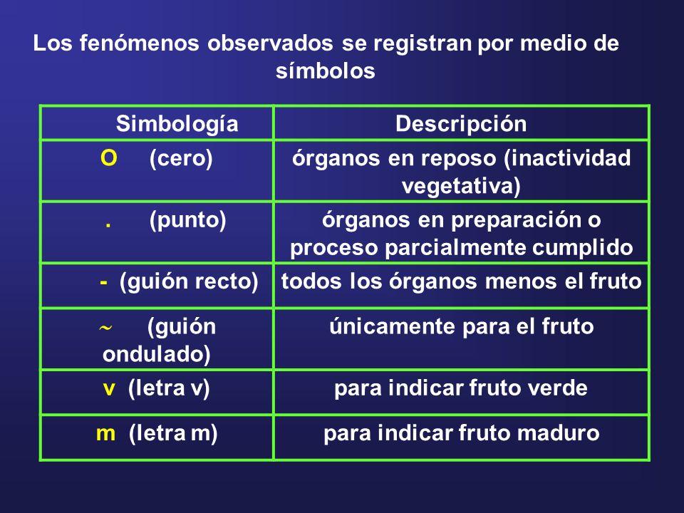 Los fenómenos observados se registran por medio de símbolos Simbología