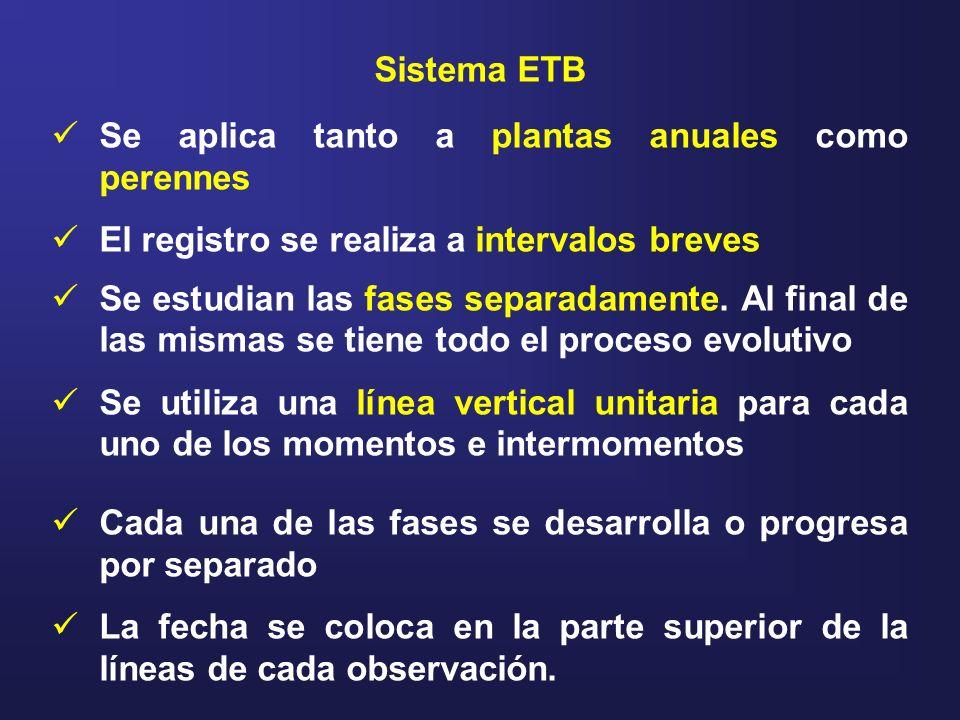 Sistema ETBSe aplica tanto a plantas anuales como perennes. El registro se realiza a intervalos breves.