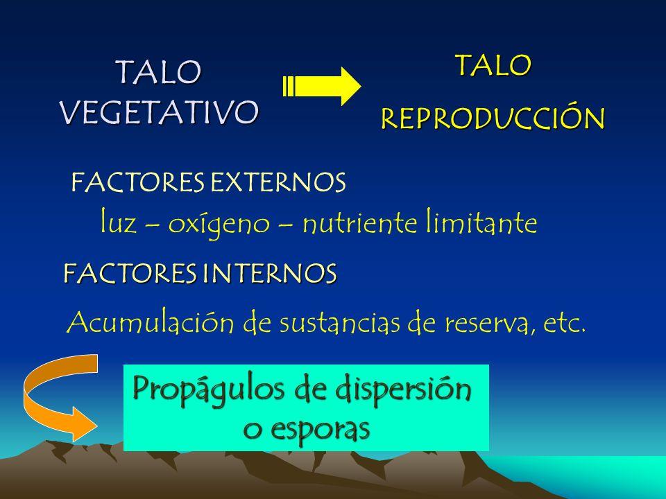 Propágulos de dispersión