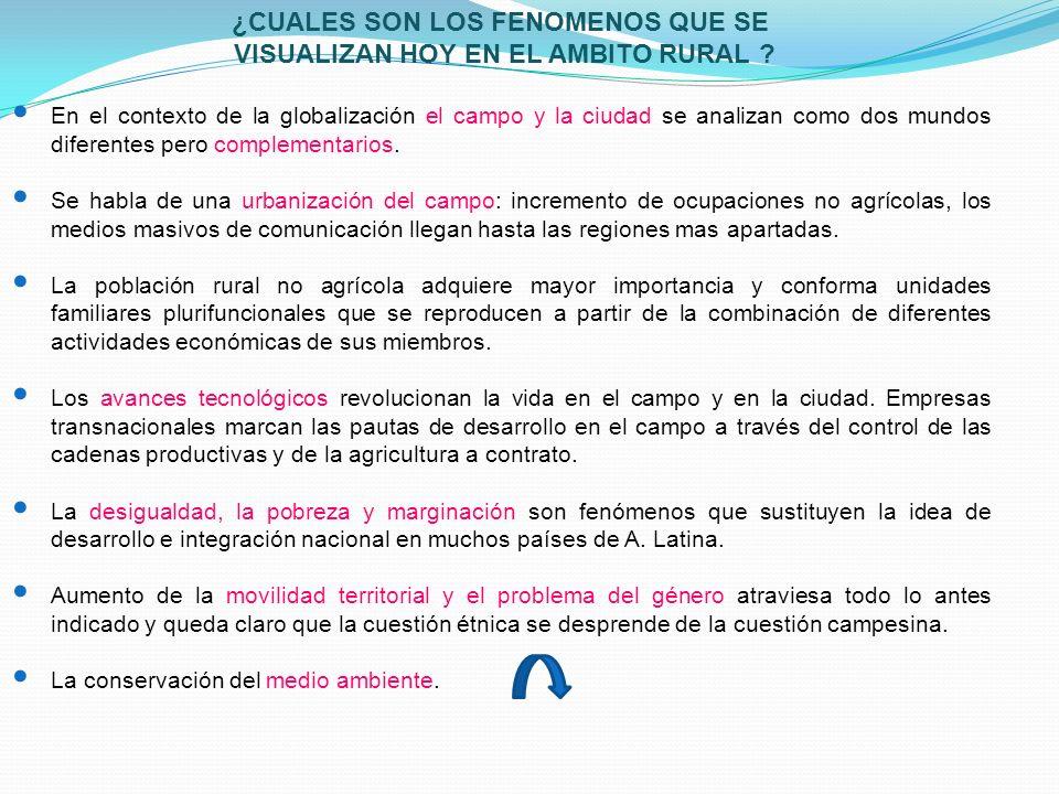 ¿CUALES SON LOS FENOMENOS QUE SE VISUALIZAN HOY EN EL AMBITO RURAL