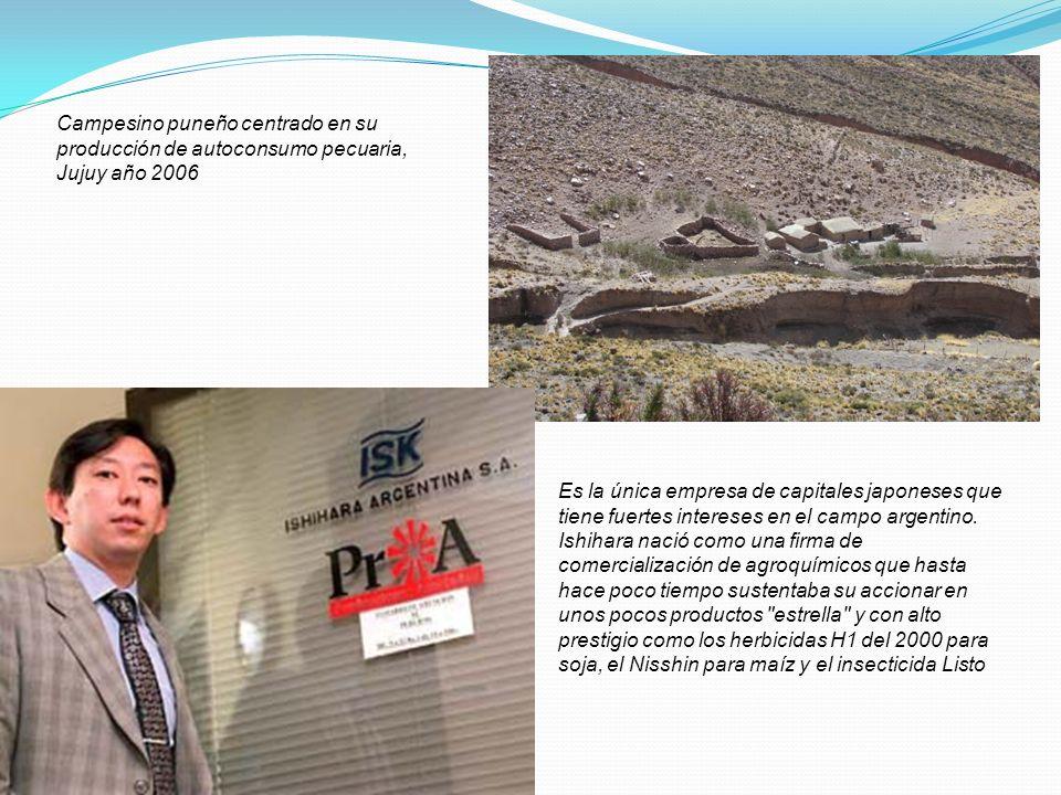 Campesino puneño centrado en su producción de autoconsumo pecuaria, Jujuy año 2006