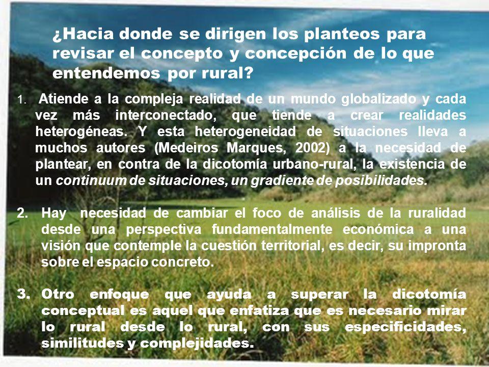¿Hacia donde se dirigen los planteos para revisar el concepto y concepción de lo que entendemos por rural