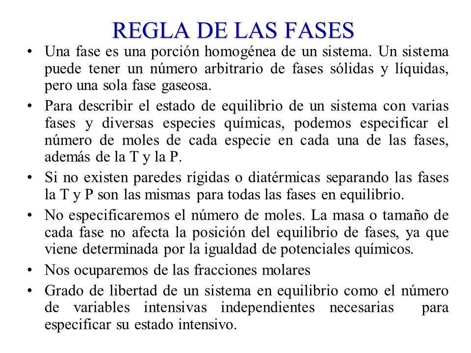REGLA DE LAS FASES