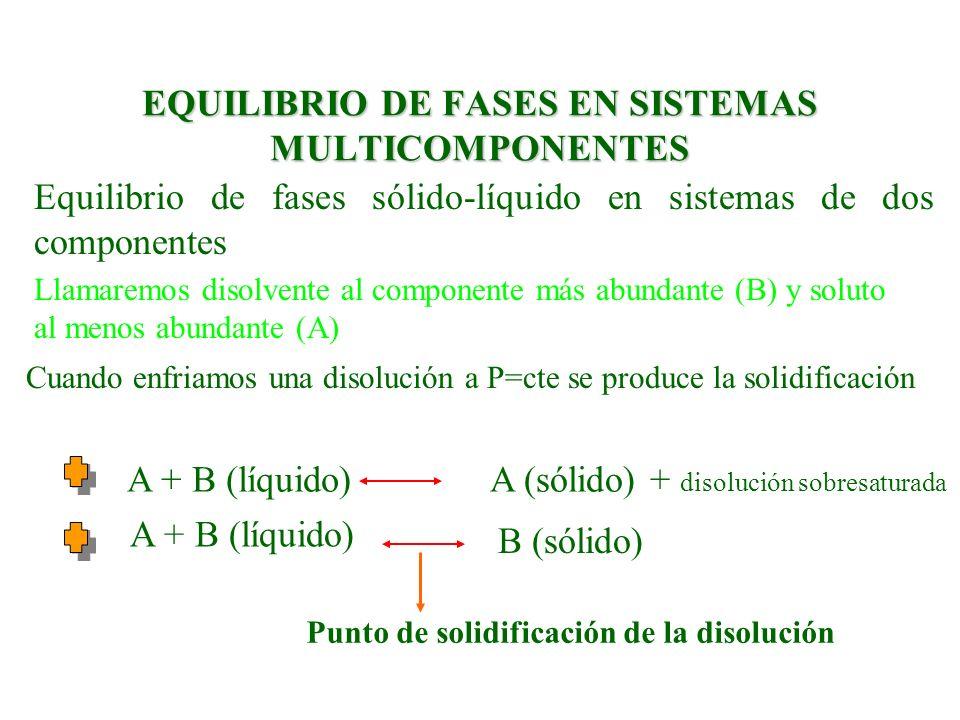 EQUILIBRIO DE FASES EN SISTEMAS MULTICOMPONENTES