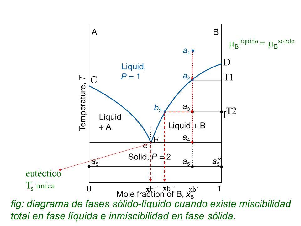 Bliquido = Bsolido D T1 C T2 I E eutéctico Ts única